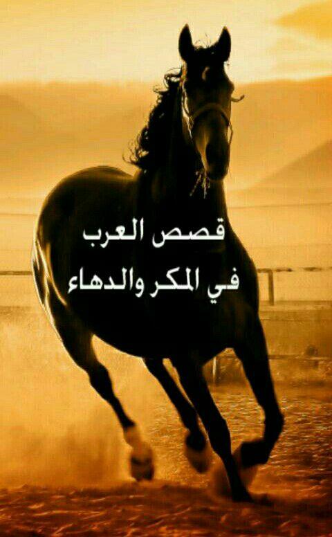 قصص العرب في المكر والدهاء